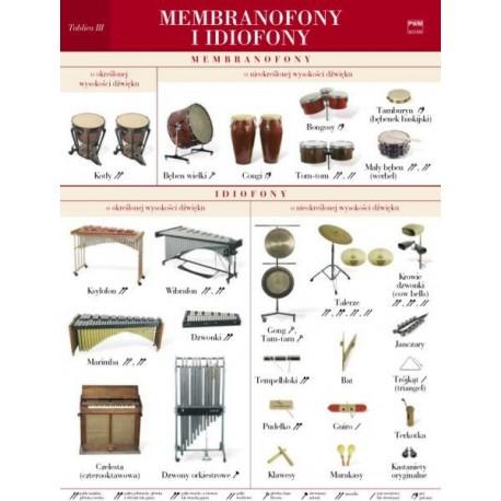 MEMBRANOFONY I IDIOFONY. TABLICA POMOCNICZA 3