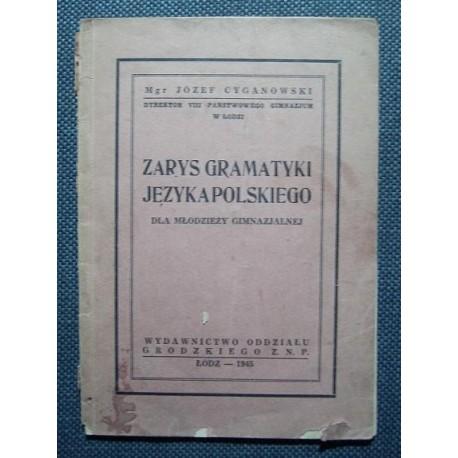 Józef Cyganowski ZARYS GRAMATYKI JĘZYKA POLSKIEGO DLA MŁODZIEŻY GIMNAZJALNEJ [antykwariat]